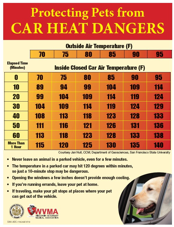 Temperature chart for pets in hot cars.